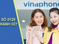 Sim Đầu số 0129 đổi thành đầu số nào?
