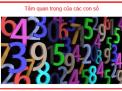 Tìm hiểu về 81 con số đời người và ứng dụng vào cách tính sim số hợp phong thủy